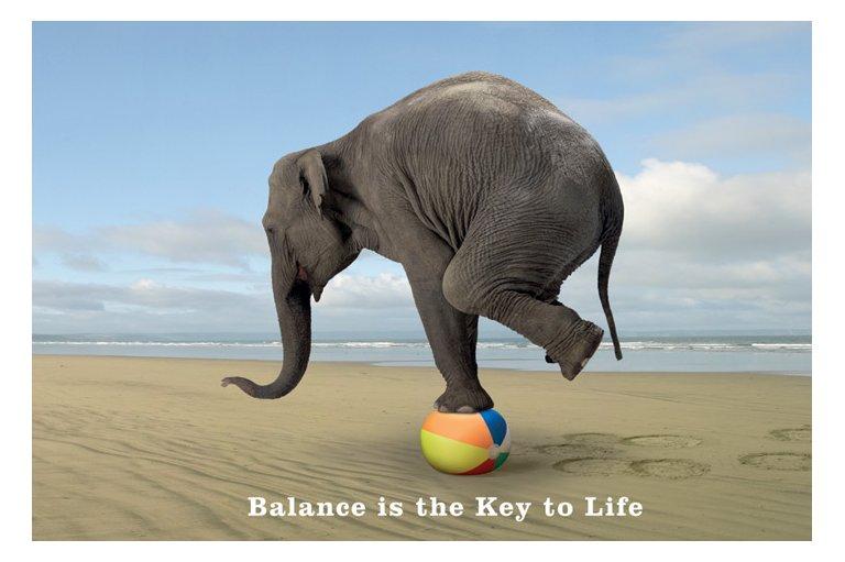 balance, physio, ashburton