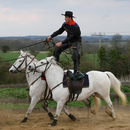 Physio for Common Equestrian Injuries